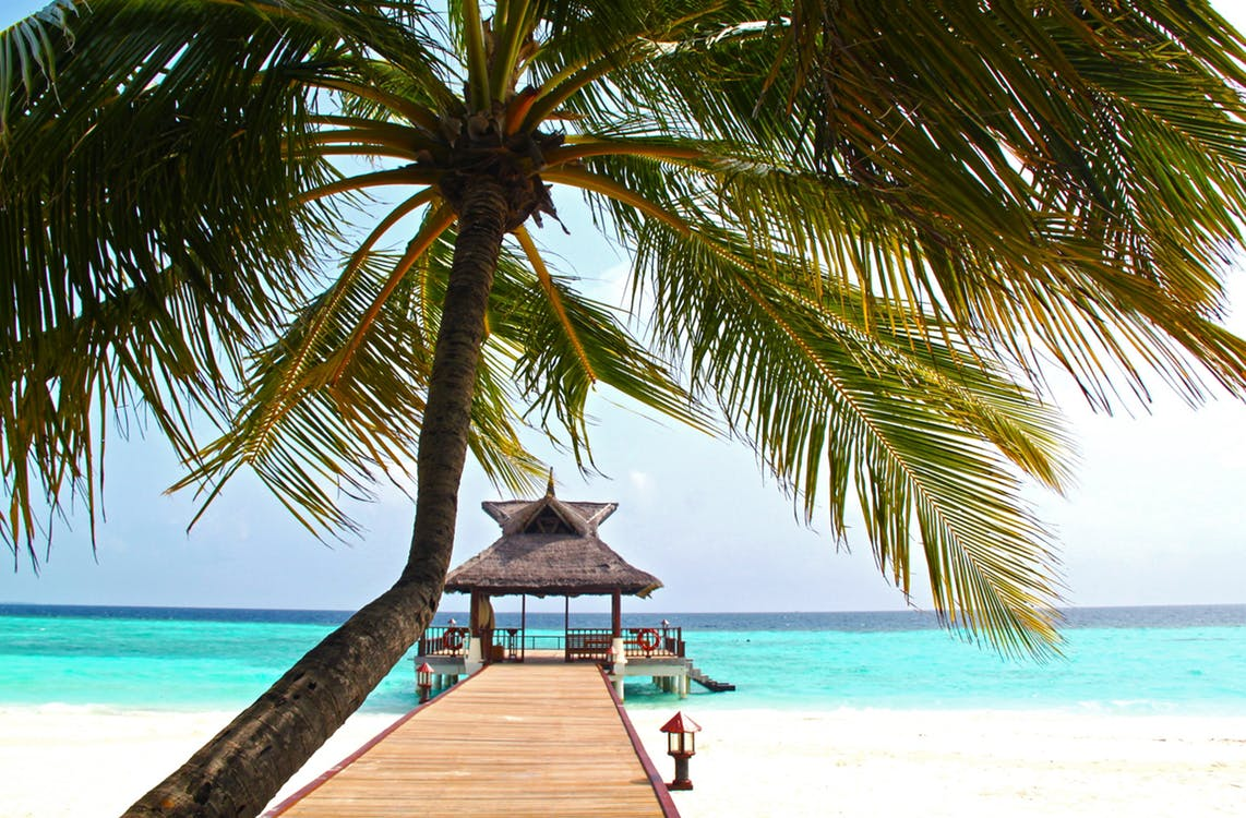 Wi-FI Friendly Accommodation - full coverage Wi-Fi without dead zones.